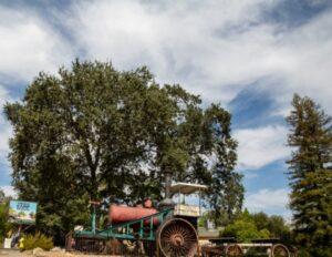 Tree Trek Tours @ Angels Camp Museum | Angels Camp | California | United States